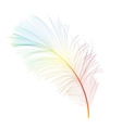 Bird Feather Hand Drawn Background vector image