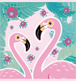 pink flamingo couple cool flamingo decorati vector image