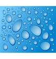 blue drops on the glass vector image