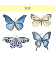 Set of watercolor butterflies vector image
