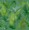 tropical palm leaves seamless background vector image