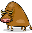 bull or buffalo cartoon vector image