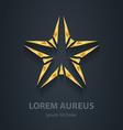 Gold star logo Award 3d icon Golden logotype vector image