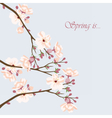 Watercolor Background with Blooming Cherry Flowers vector image