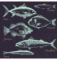 Hand drawn sea life vector image