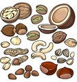 Nuts seeds icon set vector image