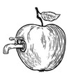 apple fruit with tap engraving vector image