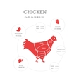 Butcher shop concept Chicken vector image