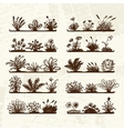 Sketch of plants on shelves for your design vector image