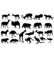zoo animals collection vector image