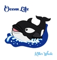 Killer whale in the ocean vector image