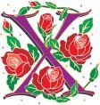 rosette letter X vector image