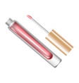 tube with lip gloss vector image