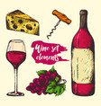 colourful sketch of wine elements vector image