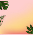 summer banner with tropical leaf vector image