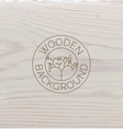 White wood texture background close up vector image vector image