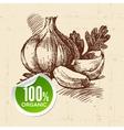 Hand drawn sketch vegetable Eco food background vector image
