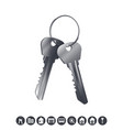 bunch of silver house keys vector image