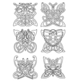 Butterfly insect tribal celtic ornaments vector image