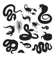 Flat snakes and other danger animals vector image