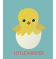 Little Rooster Cock Chicken Flat Simple Icon vector image