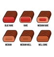 Degrees of Steak Doneness Icons Set vector image vector image