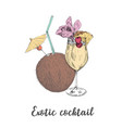 exotic cocktail coconut pineapple drink sketch vector image