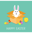 Happy Easter Cute bunny rabbit chicken and eggs vector image