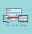 Responsive web design development flat styl vector image