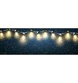 Christmas Lights With Snow vector image