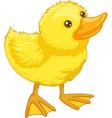 cute cartoon duck vector image vector image