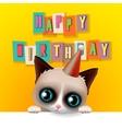 Cute happy birthday card with fun grumpy cat vector image