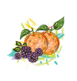 fruits with colorful splashes vector image vector image