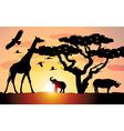 elephant giraffe rhinoceros vector image