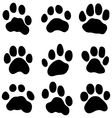Tiger paw vector image