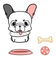 French bulldog puppy of cute vector image