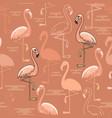 Seamless pattern of hand drawn pink flamingo bir vector image