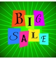Big Sale Words from Color Paper over Green vector image