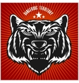 Tigers head in vintage style vector image