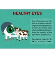 Benefits of dairy products for eyesight vector image