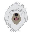 isolated english sheepdog avatar vector image