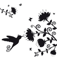 kolibri vector image