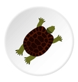 Turtle icon flat style vector image