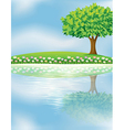 A big tree near the river vector image