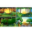 Forest scenes vector image