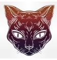 Black cat head portrait vector image