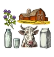 Set Milk farm Cow head clover box carton vector image