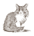 kitten drawing vector image