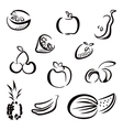 Fruit symbols vector image