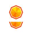 orange in polygonal style vector image